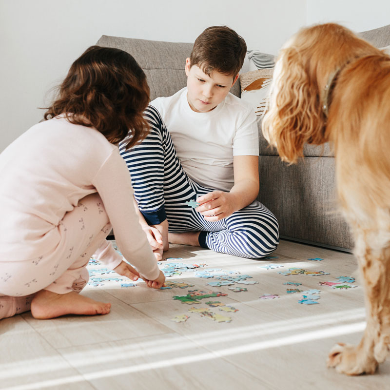 Children and pet protected by Zoono and playing